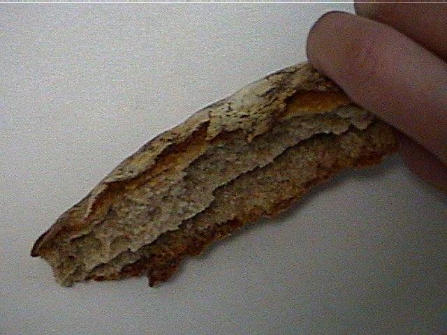 bread4_2h.jpg